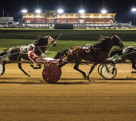 Harness racing at Lexington's Red Mile